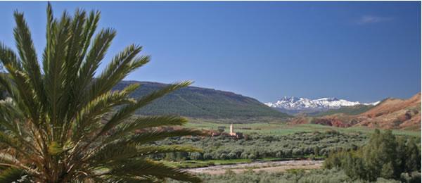 beyond marrakech property